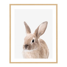 Friendly Rabbit Framed Printed Wall Art