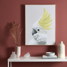 Yellow Crested Cockatoo Framed Canvas Wall Art
