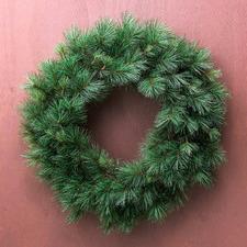 Classic Pine Premium Wreath