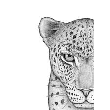 Luca the Leopard Left Printed Wall Art