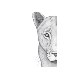 Linda the Lioness Printed Wall Art
