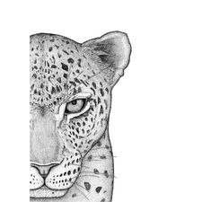 Luca the Leopard Right Printed Wall Art