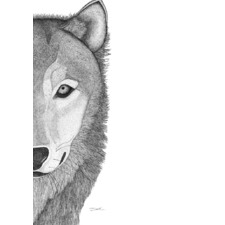 Willow the Wolf Printed Wall Art