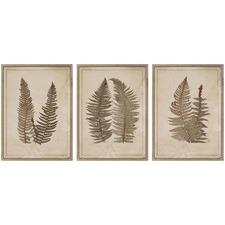 3 Piece Aged Fern Framed Print Wall Art Set