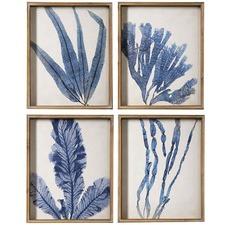 4 Piece Navy Hamptons Coral Framed Print Wall Art Set