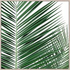 Palm Spine Framed Canvas Wall Art