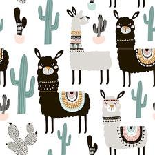Cactus Llama Canvas Wall Art