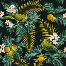 Moody Parrot Tropicana Canvas Wall Art