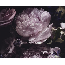 Purple Midnight Bloom Canvas Wall Art