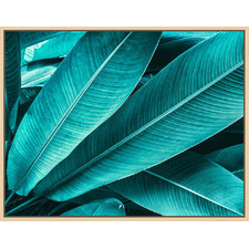 Heliconia Leaves Natural Framed Canvas Wall Art