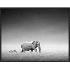Elephant Adventures Natural Framed Canvas Wall Art