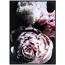 Pink Peonies Framed Canvas Wall Art