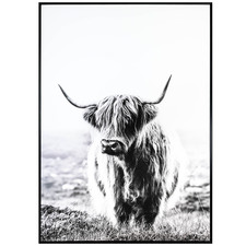 Get My Best Side Bovine Framed Canvas Wall Art