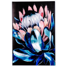Vibrant Protea Profile Framed Canvas Wall Art