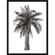 Palm Sketch I Framed Canvas Wall Art