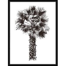 Palm Sketch II Framed Canvas Wall Art