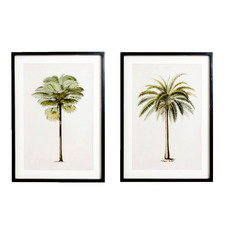 2 Piece Palm Maui Framed Printed Wall Art Set