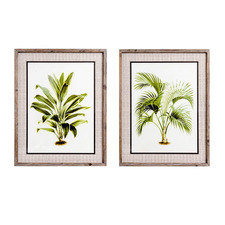 2 Piece Palm Pair Framed Printed Wall Art Set