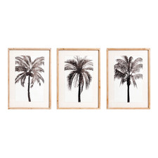 3 Piece Palm Oahu Framed Printed Wall Art Set
