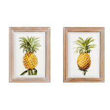 2 Piece Pineapple Pair Framed Printed Wall Art Set