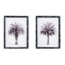 2 Piece Monochrome Shade Palm Framed Printed Wall Art Set