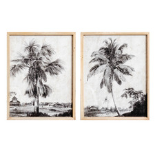 2 Piece Pair Of Palm Fronds Framed Printed Wall Art Set