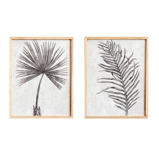 2 Piece Monochrome Leaves Palm Framed Printed Wall Art Set