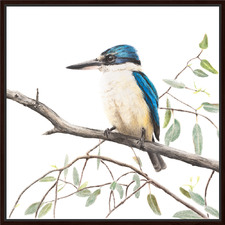 Artist Lab Sacred Kingfisher Framed Canvas Wall Art