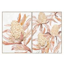 Banksia Flower Framed Canvas Wall Art Diptych