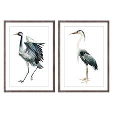 Birds of Flight Framed Printed Wall Art Diptych