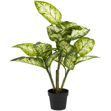 Faux Potted Dumbcane