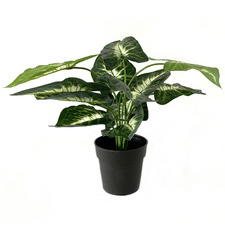 Potted Faux Taro Plant