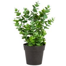 Potted Faux Eucalyptus Plant