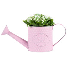 Round Pink Flower Shop Watering Can Planter