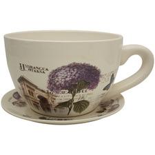 Hydrangea Teacup & Saucer Planter