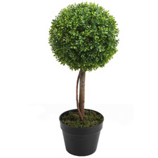 60cm Potted Faux Boxwood Topiary