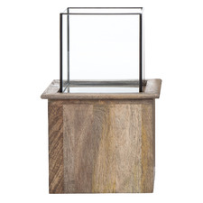 Mango Wood & Glass Terrarium