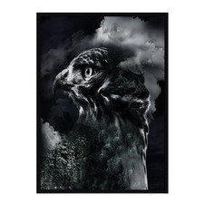 Daized Eagle Framed Print