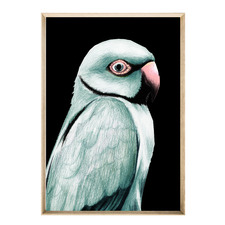 Apple Birdie Framed Printed Wall Art