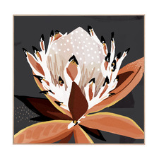 Comino Protea Framed Canvas Wall Art