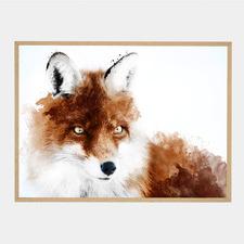 Russet Fox Framed Printed Wall Art