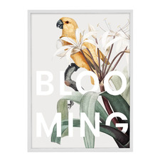 Blooming Parrot Acrylic Wall Art