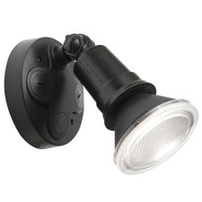 Black Comet 1 Light Floodlight