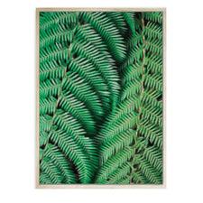 Fern Tree Framed Canvas Wall Art