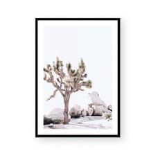 Joshua I Framed Paper Print