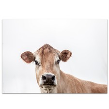 Jersey Cow Printed Wall Art
