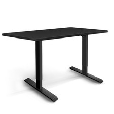 Welch Metal Electric Standing Desk
