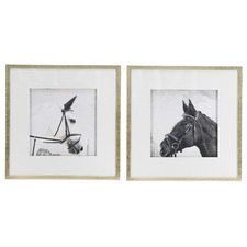 2 Piece Horse Framed Printed Wall Art Set