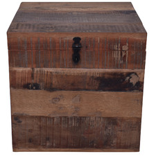 Natural Astrid Mango Wood Trunk