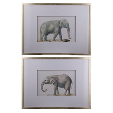 Elephant Sketch Framed Printed Wall Art Diptych